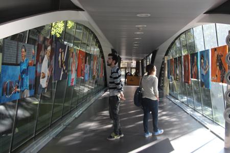 apicexxii_eventos-stands_mutua-madrilena_exposicion-arte-en-el-mutua-madrid-open_0000